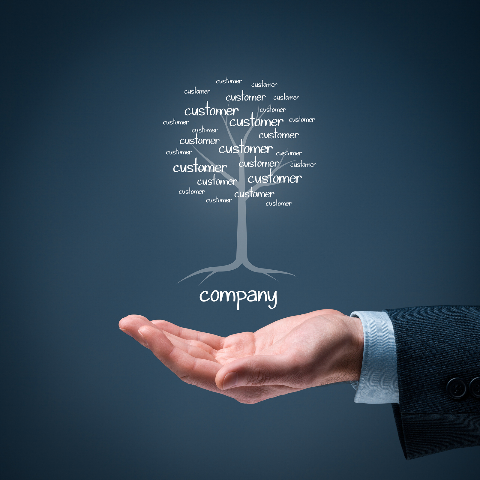 Company and customers metaphor. Company as a root of tree and customers as leaves of tree.